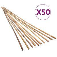 vidaXL Bambukiniai sodo kuoliukai, 50vnt., 120cm