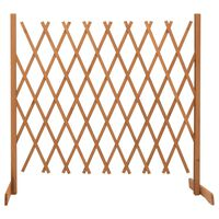 vidaXL Sodo treliažas-tvora, oranžinis, 180x100cm, eglės masyvas