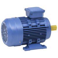 vidaXL Trifazis elektros variklis, 3kW/4AG, 2 polių, 2840aps./min.