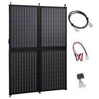 vidaXL Sulankstomos saulės energijos plokštės įkroviklis, 100W, 12V