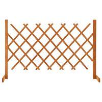 vidaXL Sodo treliažas-tvora, oranžinis, 120x90cm, eglės masyvas