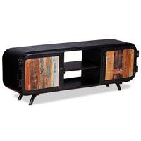 vidaXL TV spintelė, perdirbta mediena, 120x30x45cm