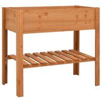 vidaXL Lovelis, 88x43x80cm, eglės mediena