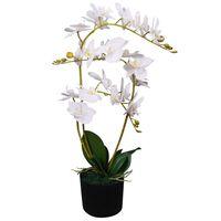 vidaXL Dirbtinė orchidėja su vazonu, 65 cm, balta