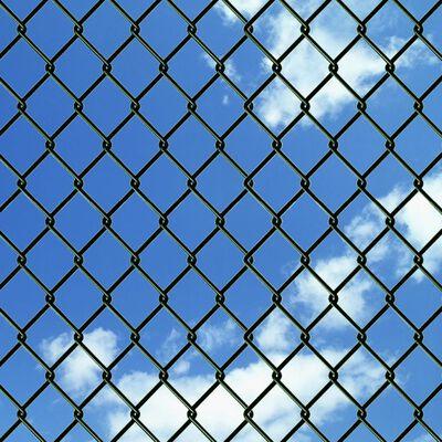 vidaXL Tinklinė tvora, žalia, 1,25x25m, plienas