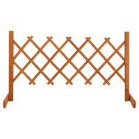 vidaXL Sodo treliažas-tvora, oranžinis, 120x60cm, eglės masyvas