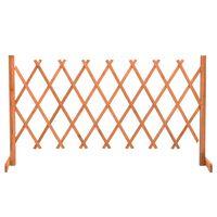 vidaXL Sodo treliažas-tvora, oranžinis, 150x80cm, eglės masyvas